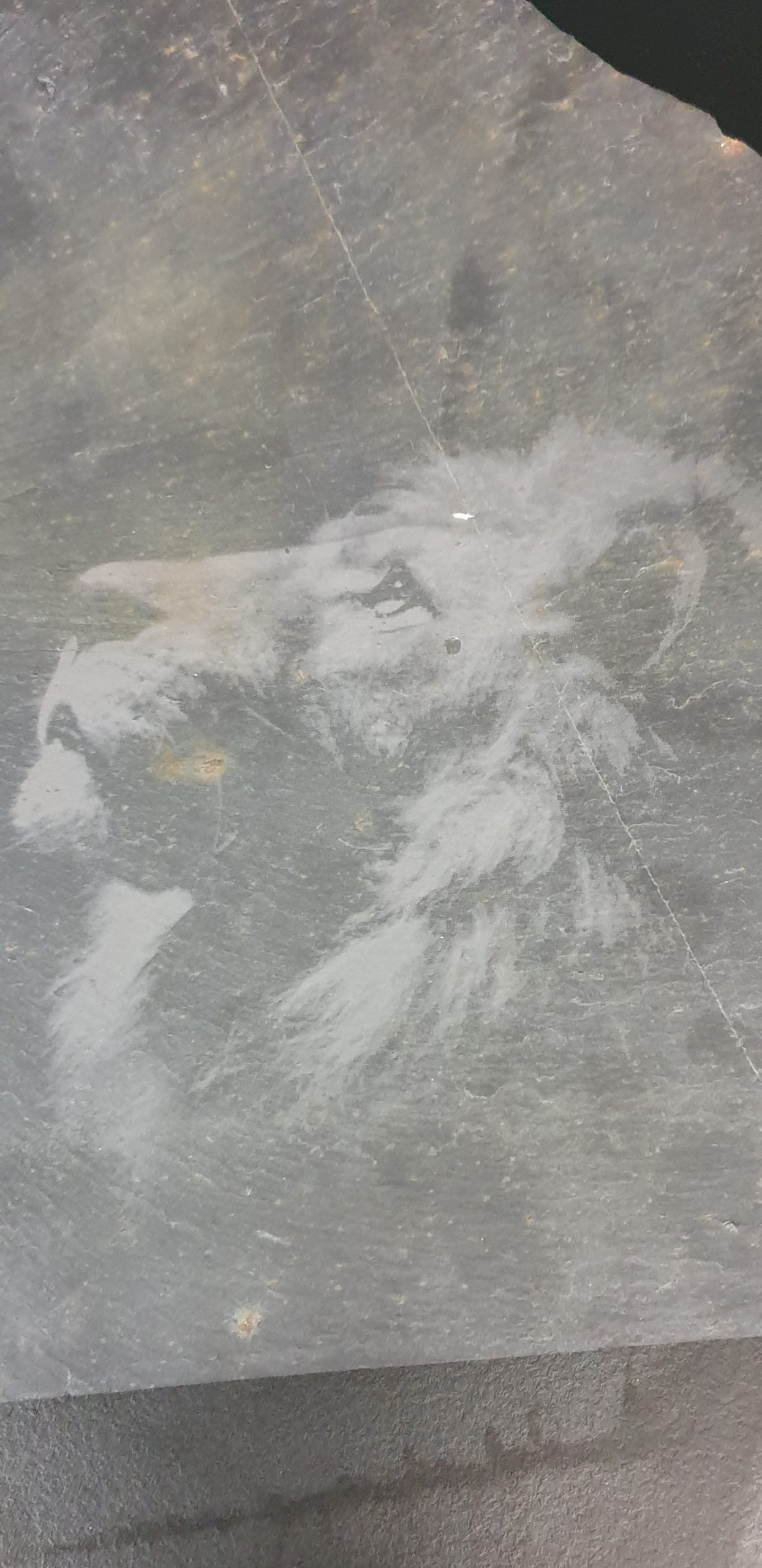 gravure image sur ardoise